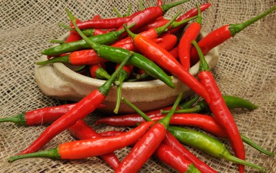 What makes Chilli hot?