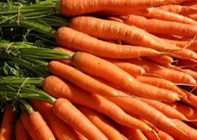 CHANTENAY KAROO Carrot