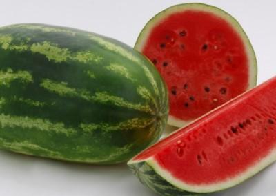 DAYTONA F1 Hybrid Watermelon