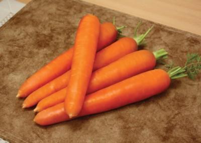 TENTACION F1 Hybrid Carrot