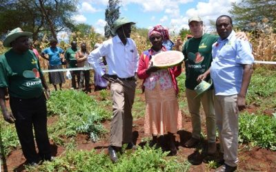 Sakata hybrids show their strength in Kenya