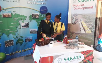 Tsogo Alumni Society Career Day