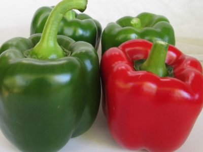 DOUBLE Up F1 Hybrid Sweet Pepper New