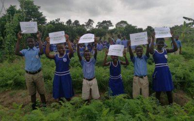 School Farm Project – Ghana