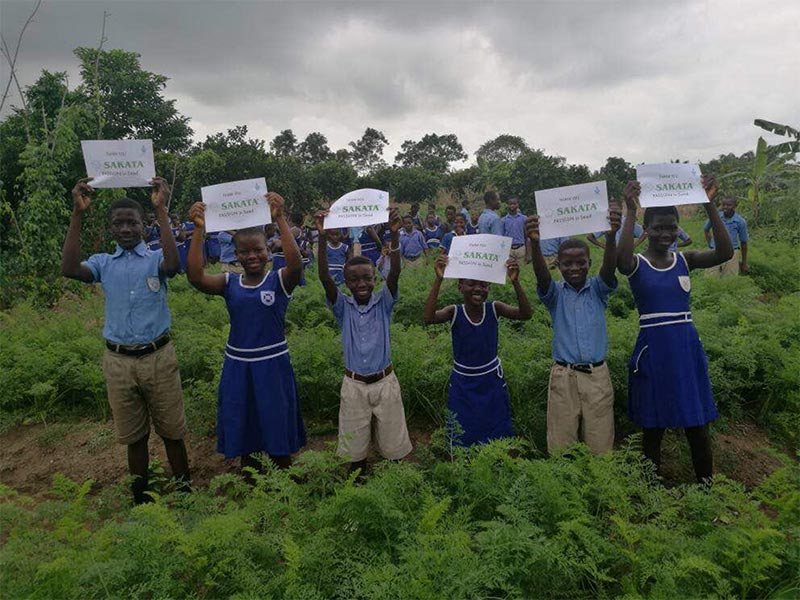 School Farm Project – Ghana