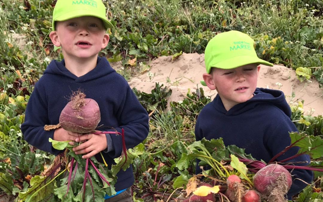 The next generation farmer
