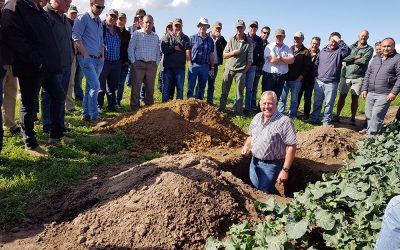Sakata hosts a Brassica and Irrigation day in George