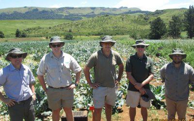 Brassica Information Day – Boston, KwaZulu Natal