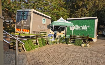 Nwanedi Farmers workshop – Tshipise