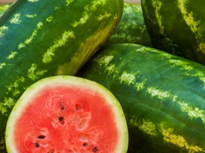 All Sweet Watermelon New