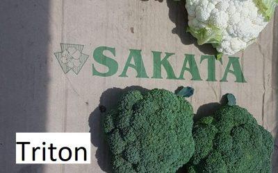 RW Farming – Alston and Triton